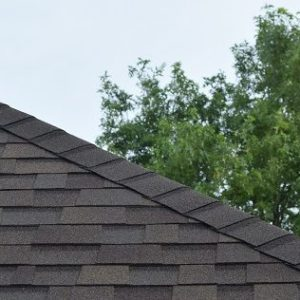 roof inspection, roof inspector, tree damage, moss damage, algae damage, asphalt shingles, shingles, architectural shingles, roofing material, roof, roof upgrade, roof repair