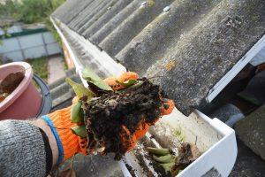 rain gutter, roof gutter, roof, roof restoration, roofing