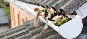gutter repair, gutter installation, gutters, rain gutters