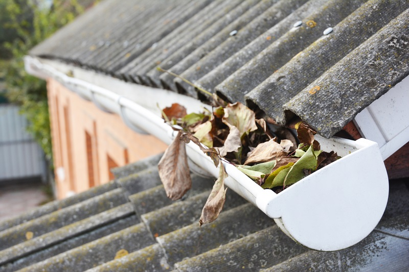 Exterior Services – Roof Gutters